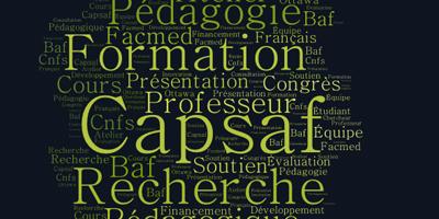 Une pomme, constituée des mots clé du CAPSAF touchant l'appui à la formation et à la recherche en éducation médicale