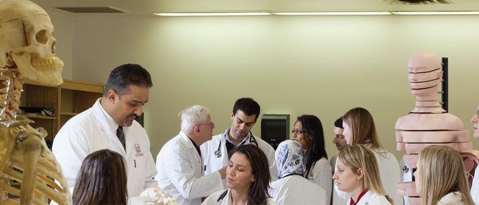 Des étudiants en médecine dans le laboratoire d'anatomie