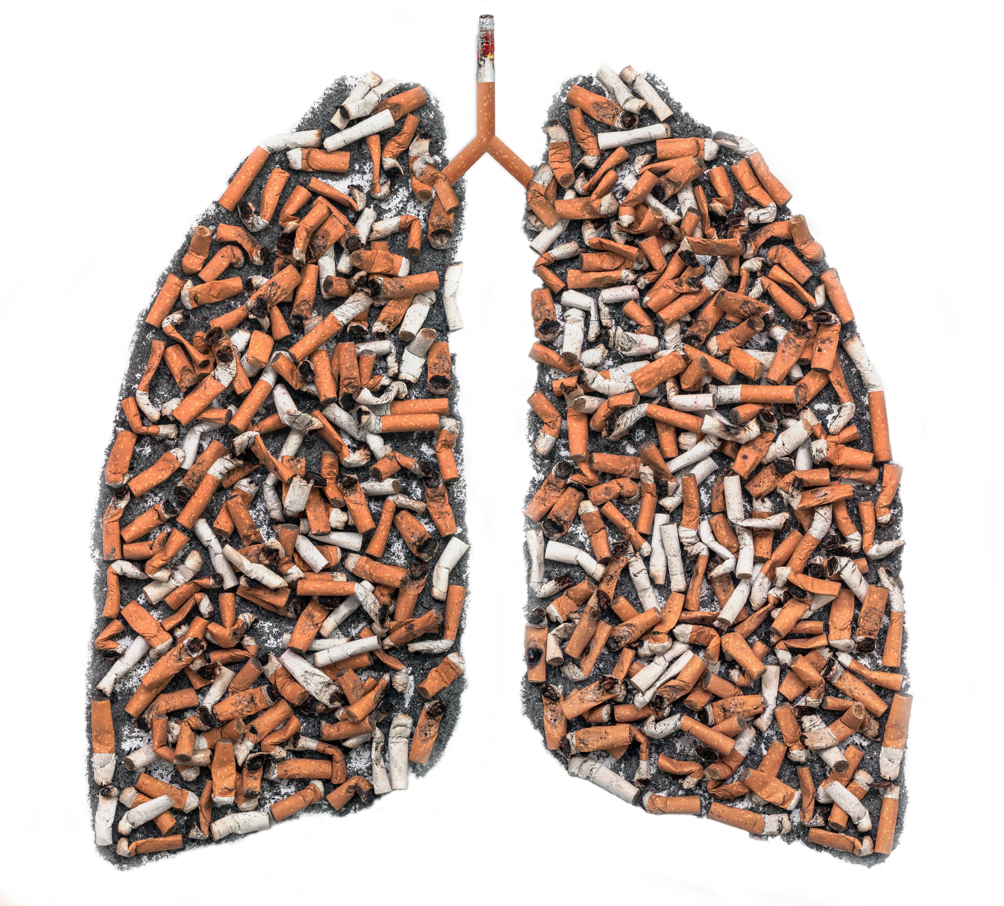 Poumon fait de cigarettes symbolisant les dommages fait par la fumée