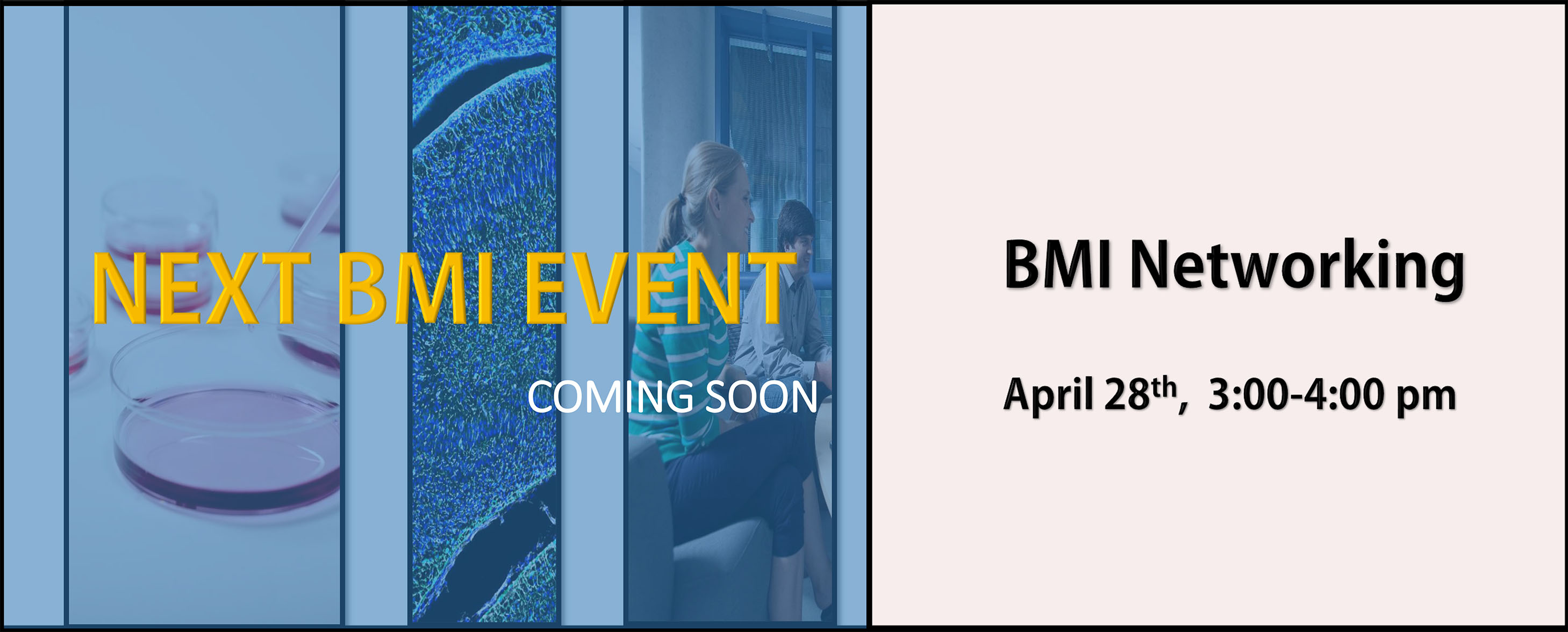 Next BMI Event - Join US - BMI Networking - April 28, 3:00-4:00 pm