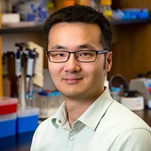 Dr. Jim Jian Sun