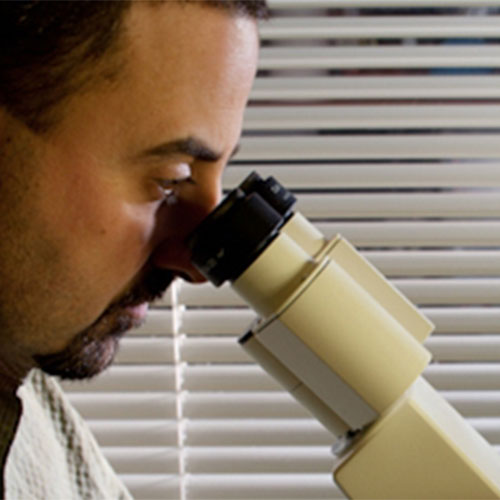A professor looking at a microscope