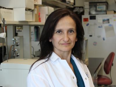 Dr Catherine Tsilfidis
