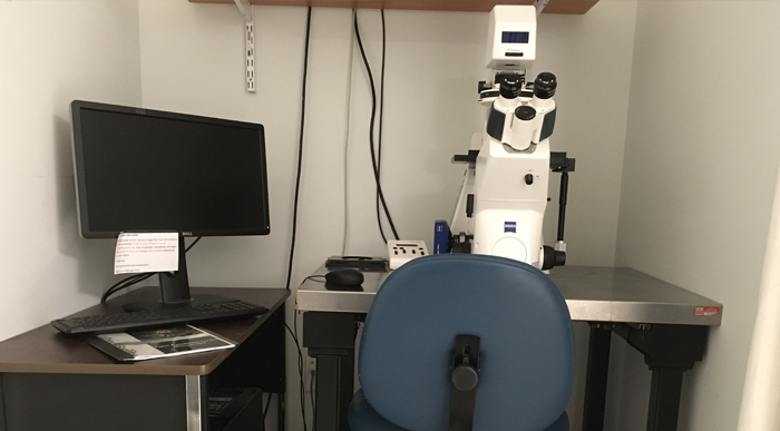 Zeiss AxioObserver D1 inverted epifluorescence microscope platform in University of Ottawa CBIA Core facility