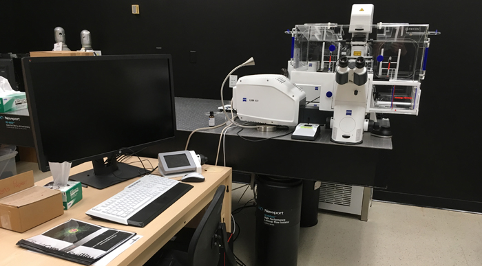 Zeiss LSM800 AxioObserver Z1 inverted confocal microscope platform in University of Ottawa CBIA Core facility.