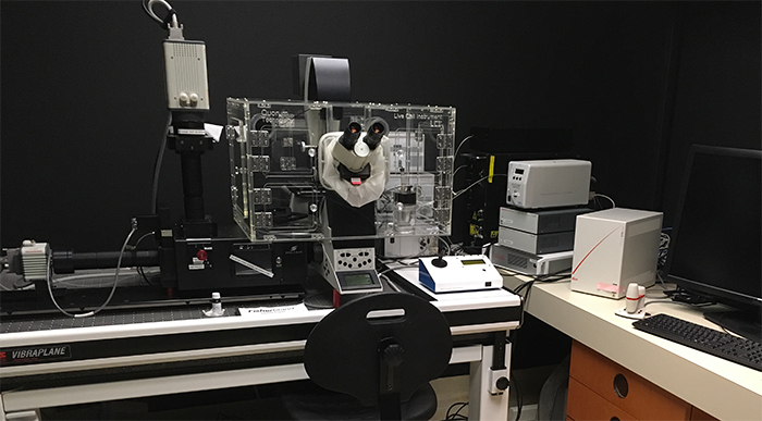 Quorum inverted spinning disk confocal microscope platform in University of Ottawa CBIA Core facility