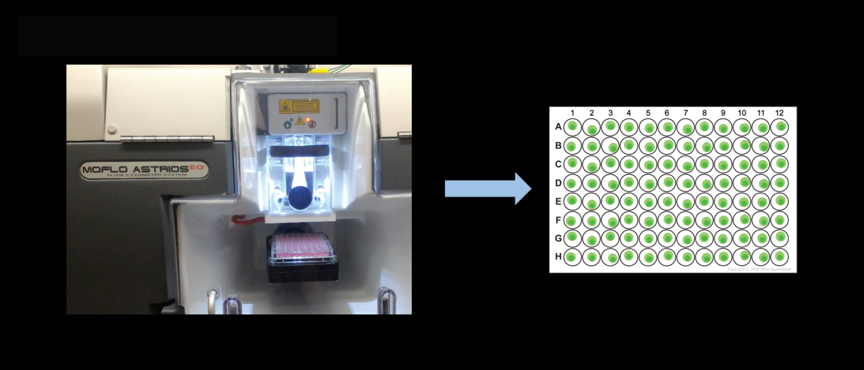 Cell sorting – single cell/well