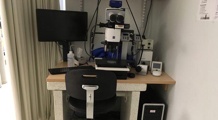 Zeiss StereoDiscovery stereomicroscope platform in University of Ottawa CBIA Core facility.