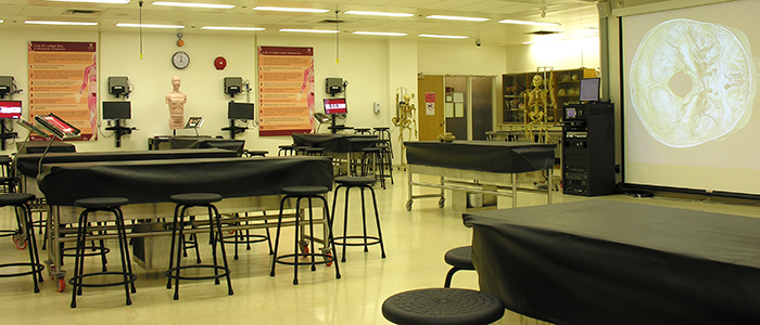 The Anatomy lab at the University of Ottawa