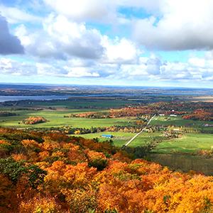 Rural Stream - Ottawa Valley