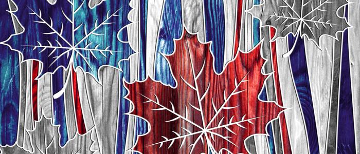 Une feuille d'érable arborant les couleurs de la francophonie symbolise les formations offertes en français, au Canada