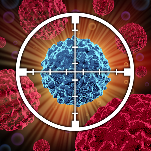 Molecular basis of the cell and cancer biology