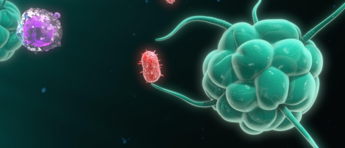 Vue microscopique d'une cellule
