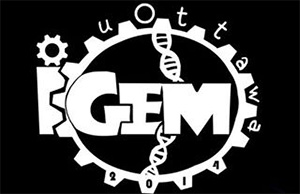 The 2014 logo of the uOttawa iGEM program