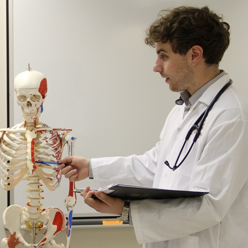 A physician pointing to a human body teaching display