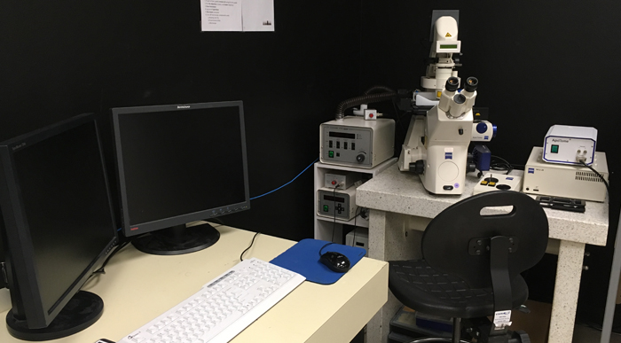 Zeiss AxioVert200 inverted epifluorescence microscope with Apotome1 platform in University of Ottawa CBIA Core facility