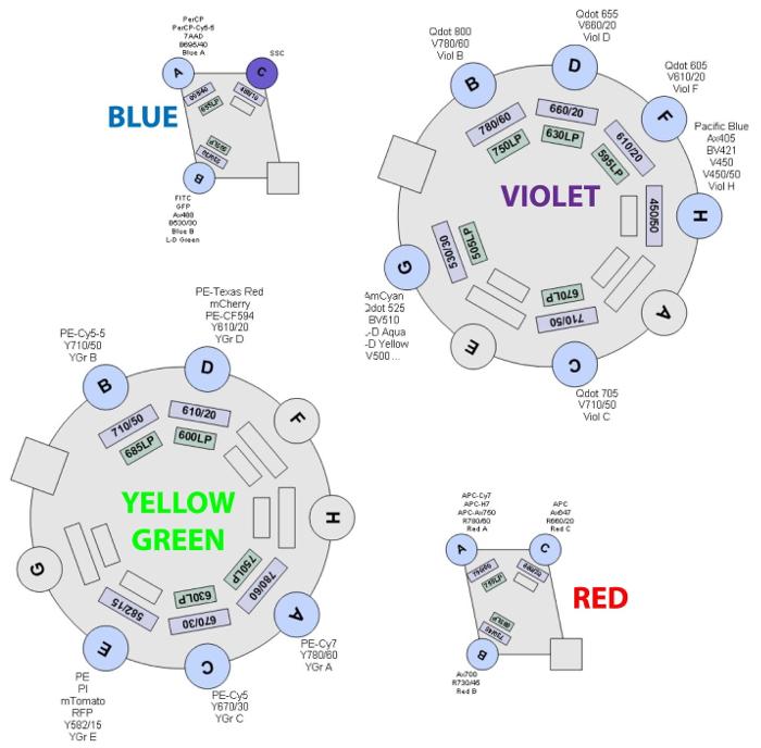 BD LSRFortessa – 16-colour Analyzer