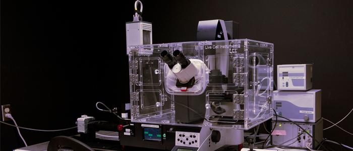 Microscope des Plateformes technologiques