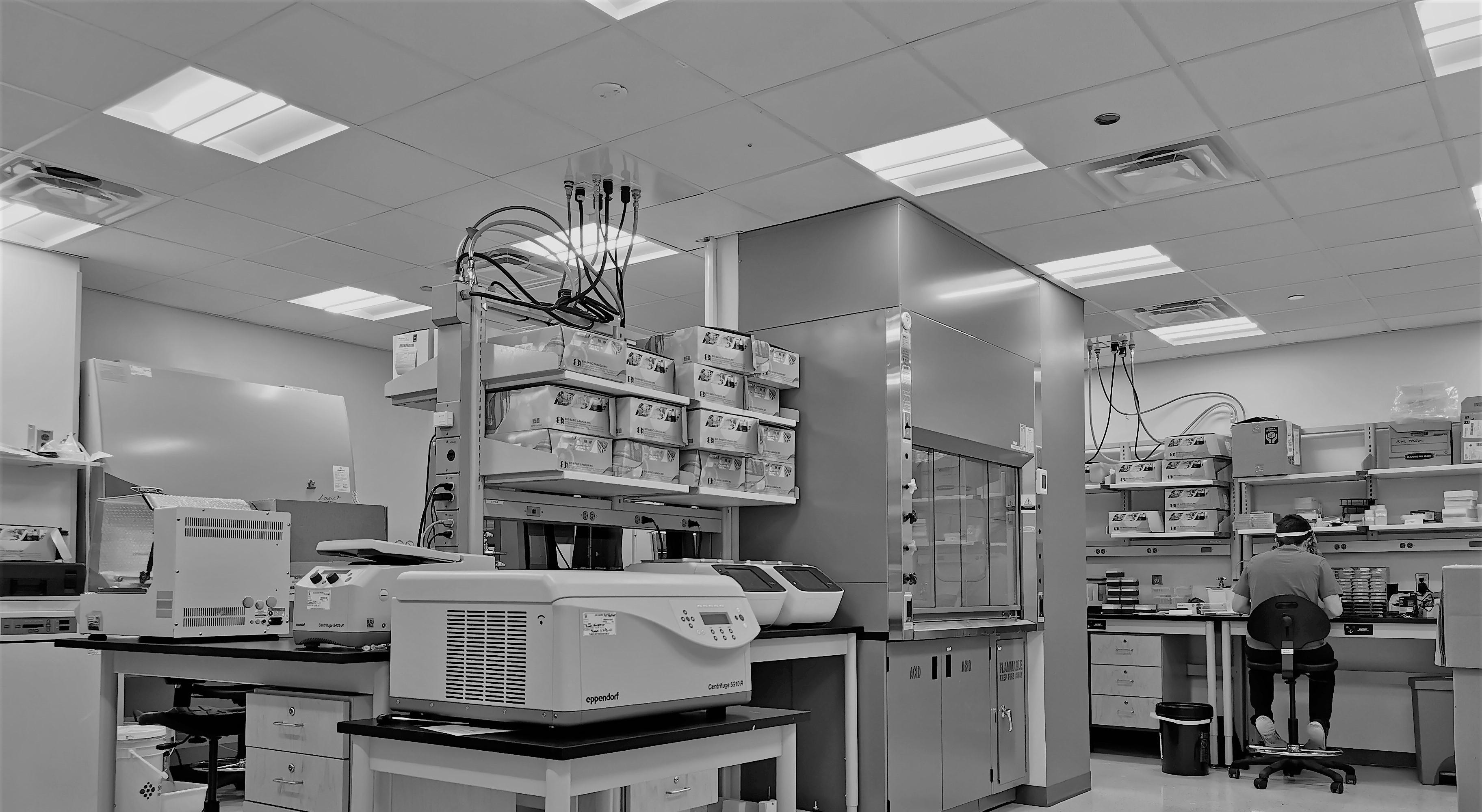Laboratoire de Biologie moléculaire et édition génomique