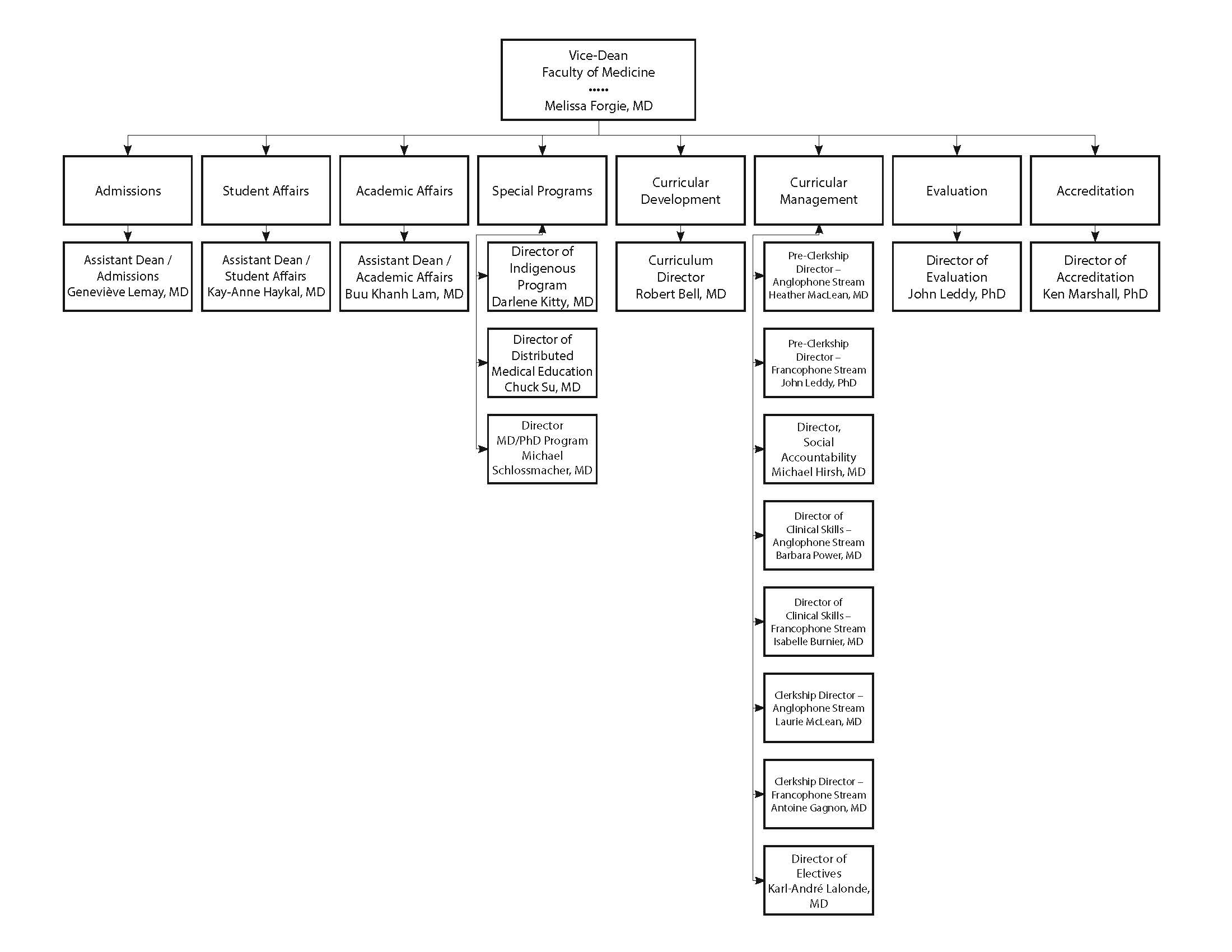 UGME Program Leadership Org Chart