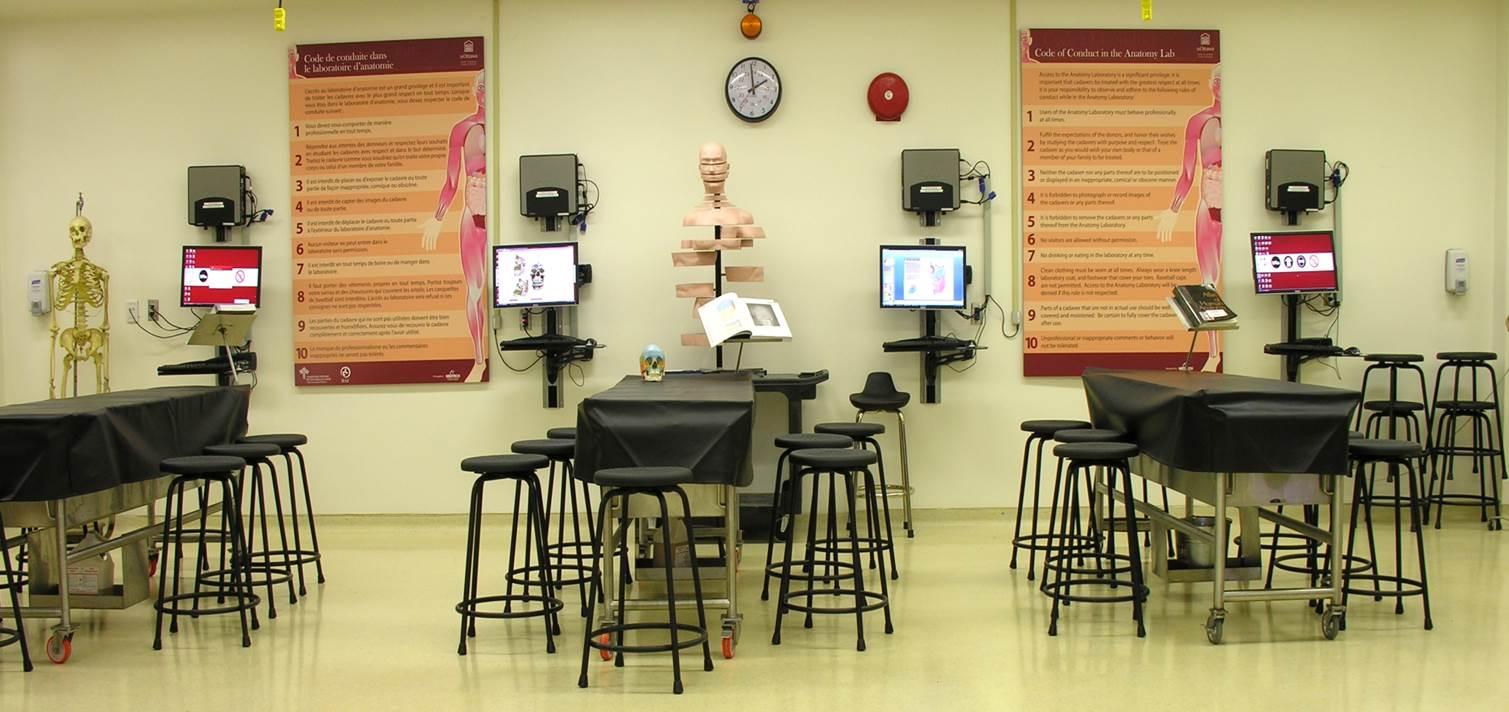 Mini Medical School, Anatomy