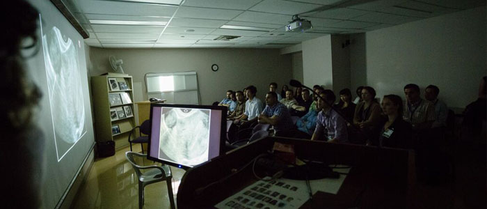 Learners in Radiology Classroom