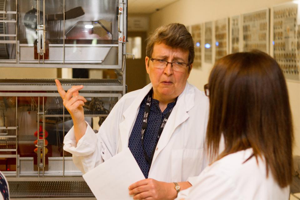 Dre Marie Bédard décrit le niveau élevé de soins fourni aux animaux à l'Université d'Ottawa à trois visiteurs lors de l'activité Portes ouvertes Ottawa.