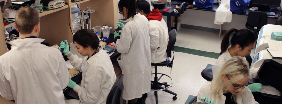 Students in a research lab