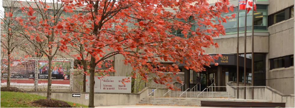 Exterior of Roger Guindon Hall, with an autumnal tree