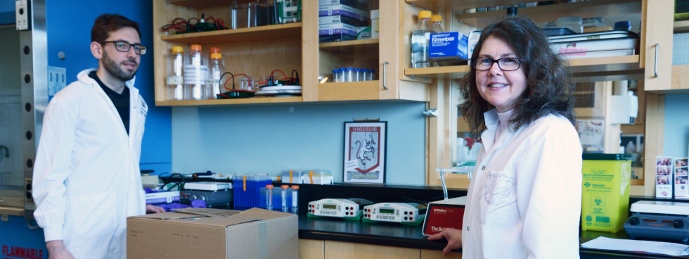 Carleton University PhD student Chris Rudyk and Teresa Fortin, manager of Carleton's Shawn Hayley lab, working alongside each other.