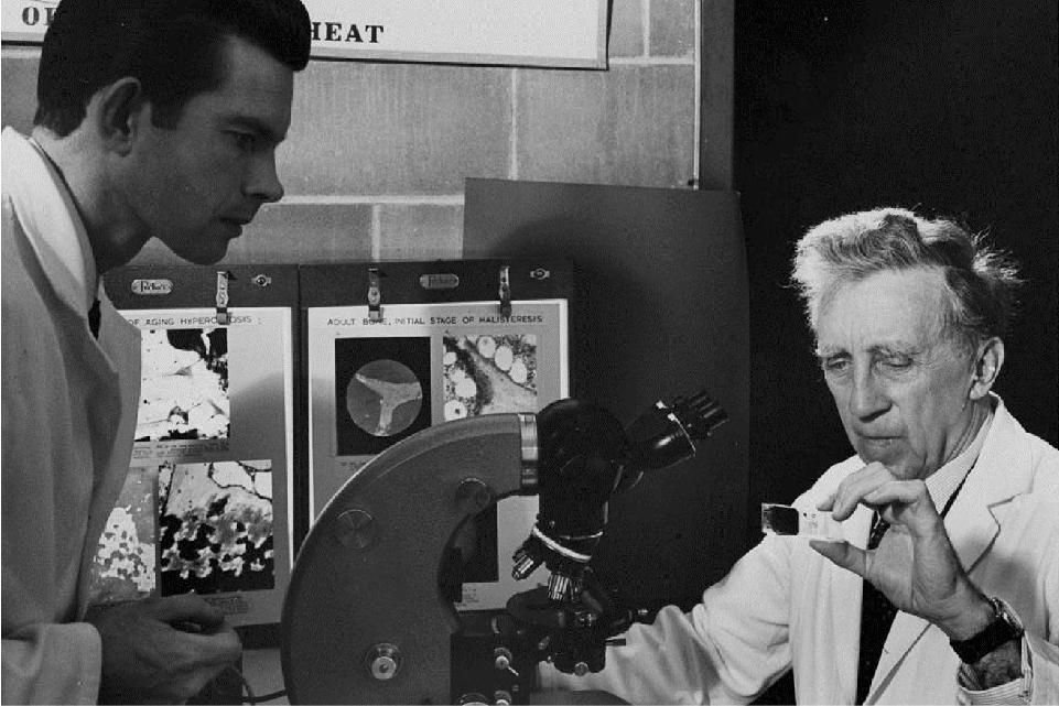 Dr. Fedor Bohatirchuk studies slides of ageing bones, while laboratory technician Martin Fokkena looks on.