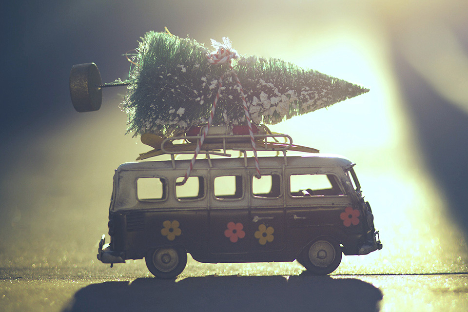 Toy bus with tree