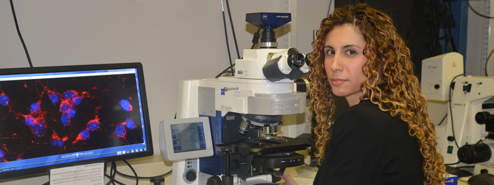 Dr. Mireille Khacho sitting in the lab in front of a computer showing stem cells.