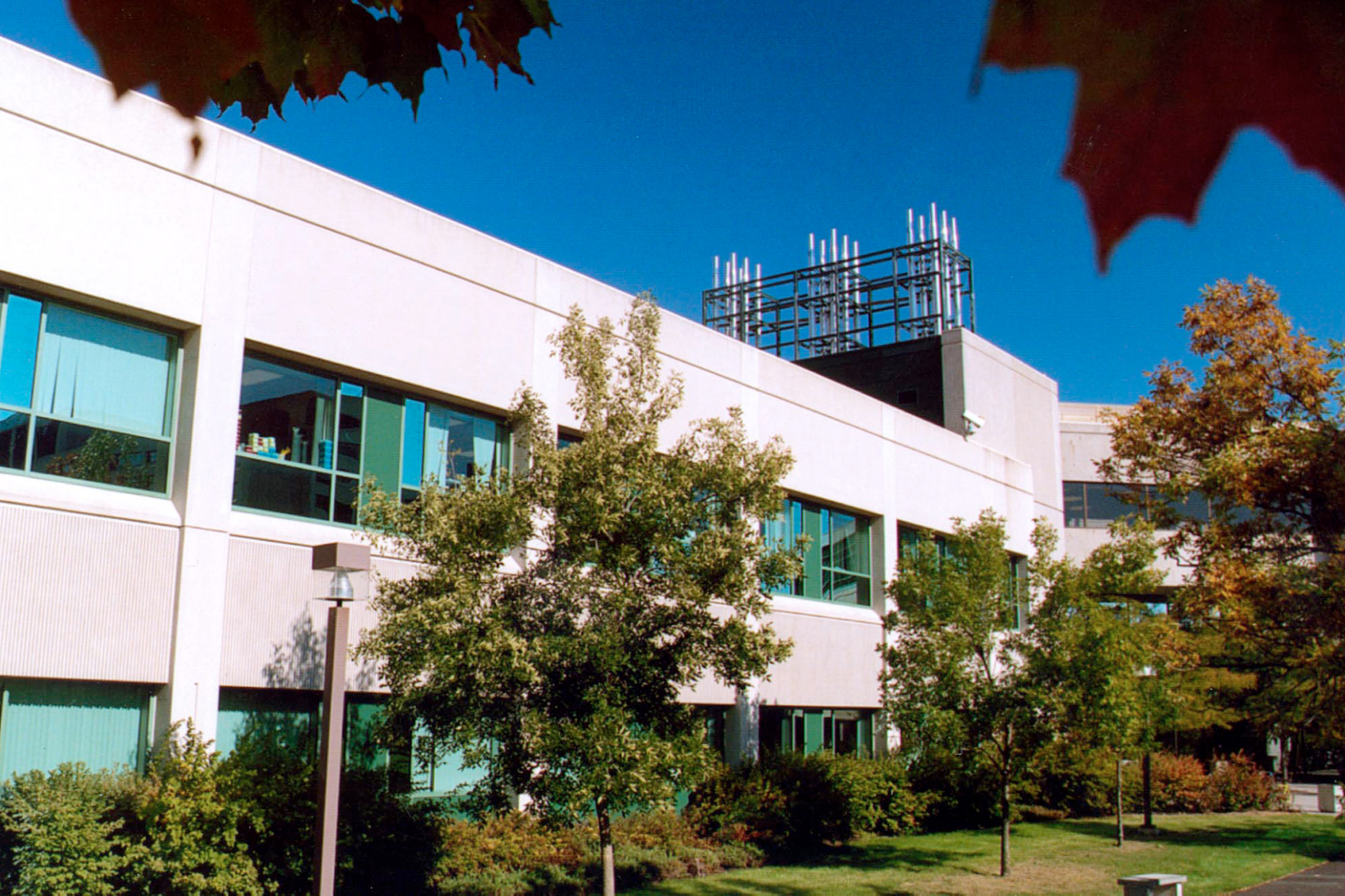Exterior of Roger Guindon Hall on a summer day.