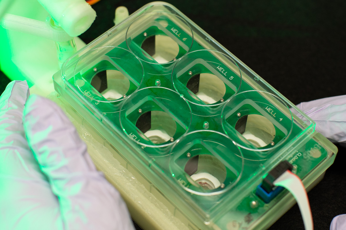 an apparatus that allows researchers to conduct tests on newly generated tissues