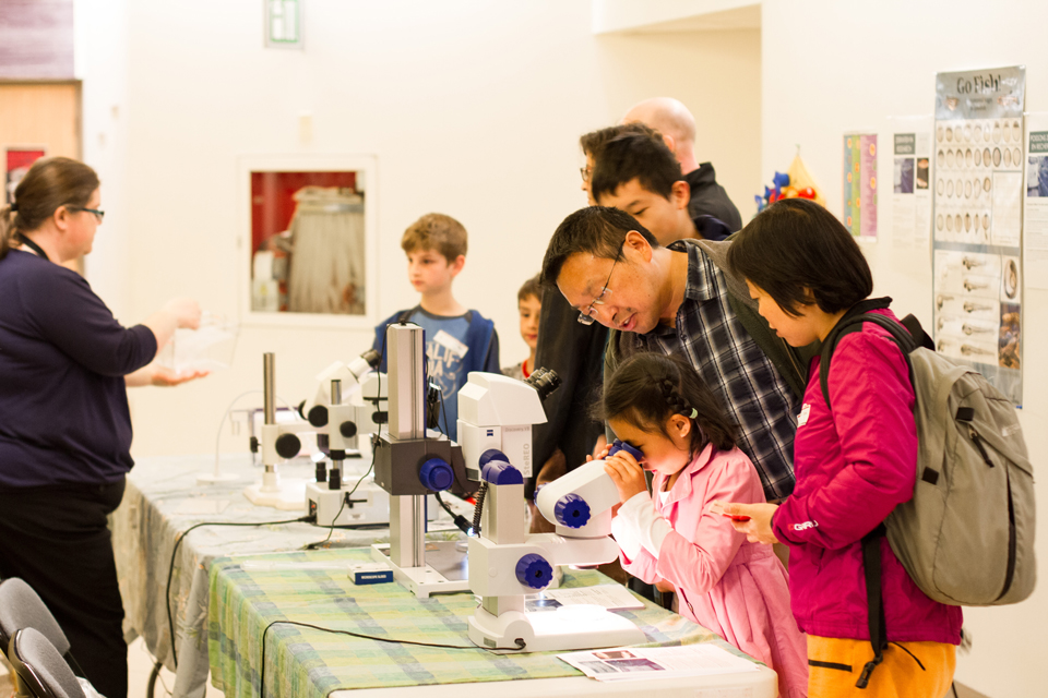 A little girl looks into a microscope as her family looks on.