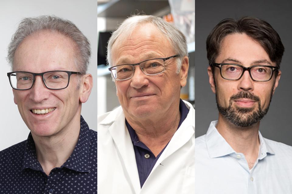 Photo of Dr. Hanns Lochmüller, Dr. Robert Korneluk and Dr. Damien D'Amours