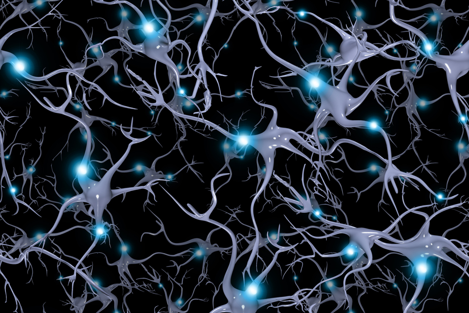 Graphic representation of neurons in the brain.