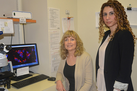 Professor Dr. Ruth Slack and Postdoctoral Fellow Dr. Mireille Khacho from the University of Ottawa Faculty of Medicine's Department of Cellular and Molecular Medicine and University of Ottawa's Brain and Mind Research Institute (uOBMRI)