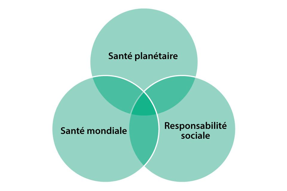 Un diagramme de Venn croisant la santé planétaire, la santé mondiale et la responsabilité sociale