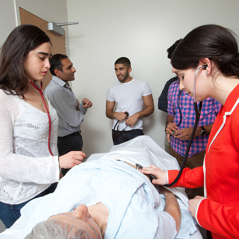Medical students diagnosing patient