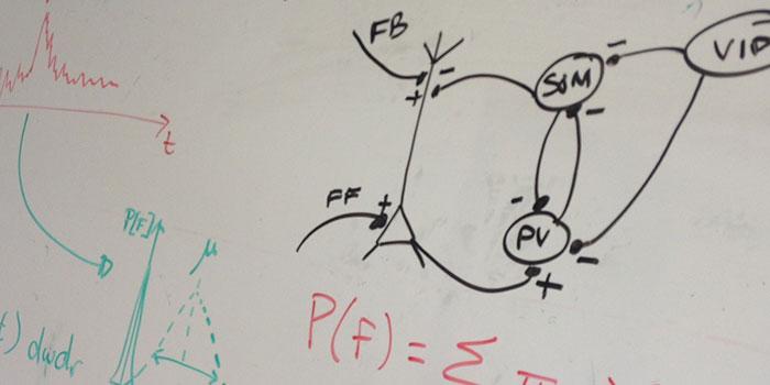 Formules et graphiques inscrits sur un tableau blanc.