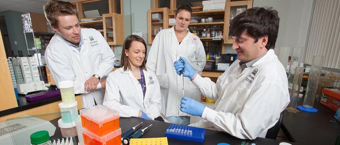 Les chercheurs tâchent sur le laboratoire