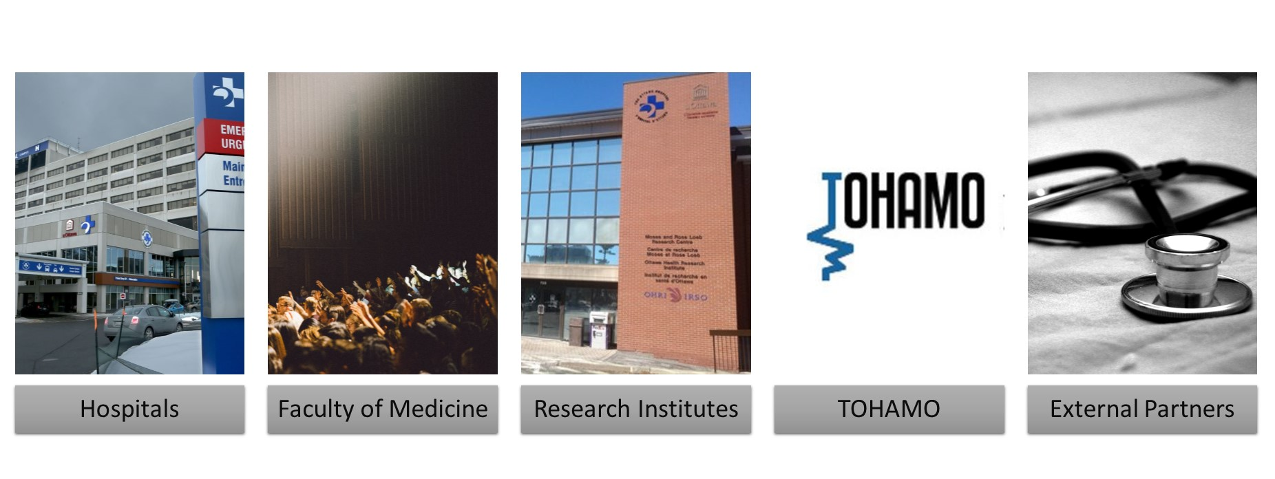 hospitals (with a TOH photo), faculty of medicine (figure showing the structure of the FoM and how DoS fits within it), Research Institute (a photo of a building housing OHRI), TOHAMO (the TOHAMO logo), and external partners (a stethosco