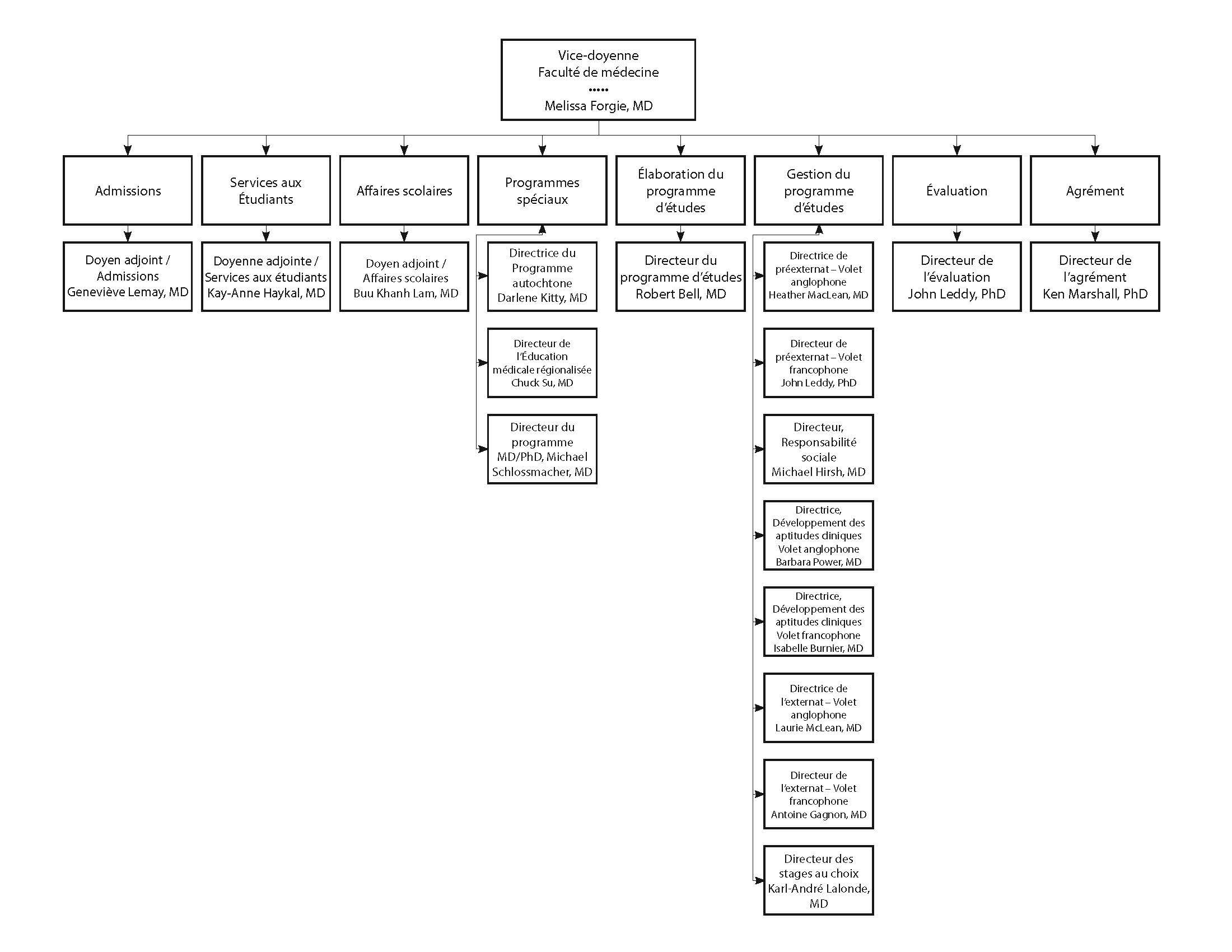 Organigramme - Responsables du programme d'études